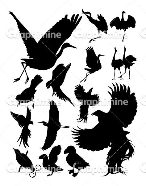 دانلود تصویر وکتور سایه پرندگان مختلف