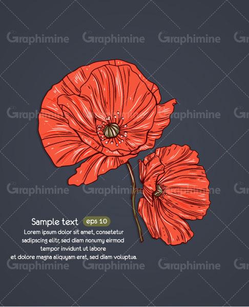 دانلود وکتور زمینه گل قرمز