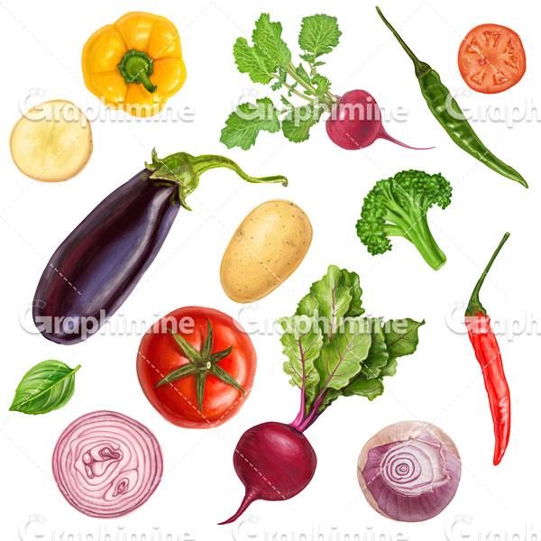 دانلود تصویر وکتور سبزیجات تازه و مختلف