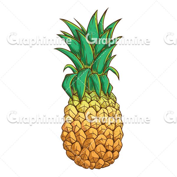 دانلود تصویر وکتور میوه آناناس