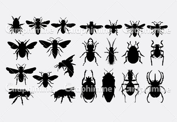 دانلود وکتور سایه حشرات