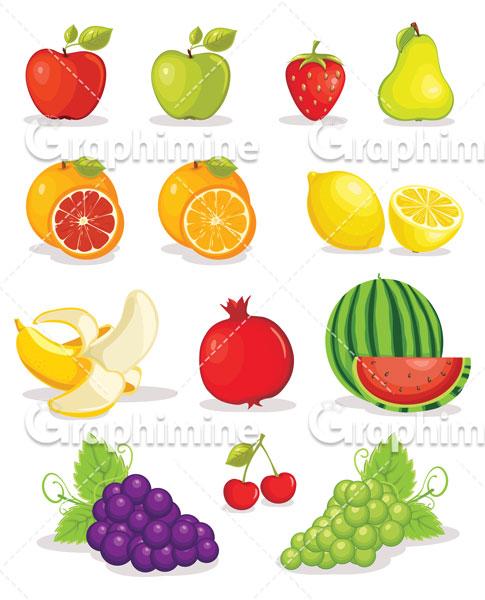 دانلود وکتور میوه های مختلف