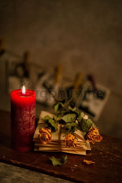تصویر استوک شمع گل رز نامه