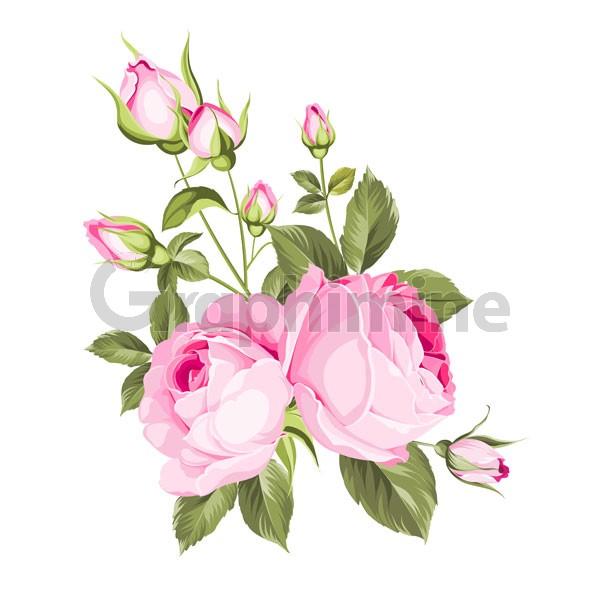 وکتور شاخه گل رز
