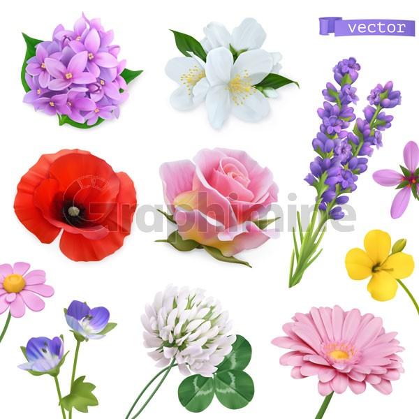 وکتور مجموعه گل