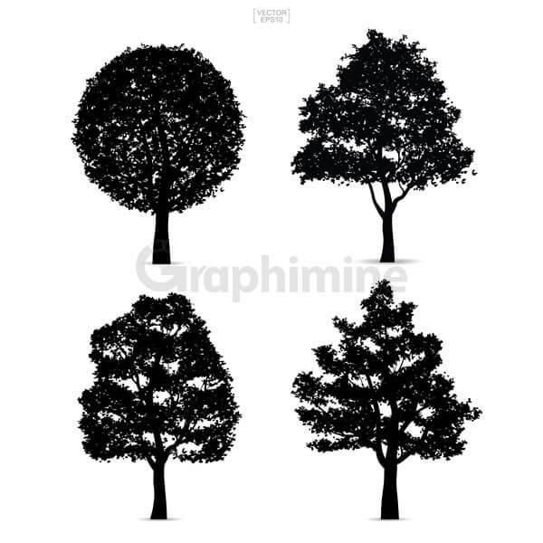 وکتور سایه درخت طبیعت