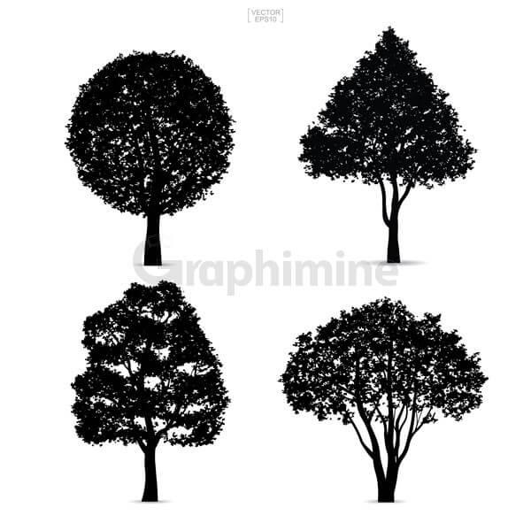 وکتور سایه درخت ها