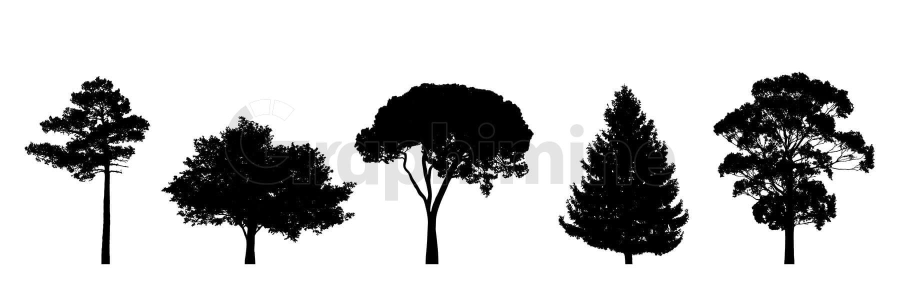 وکتور سایه مجموعه درخت