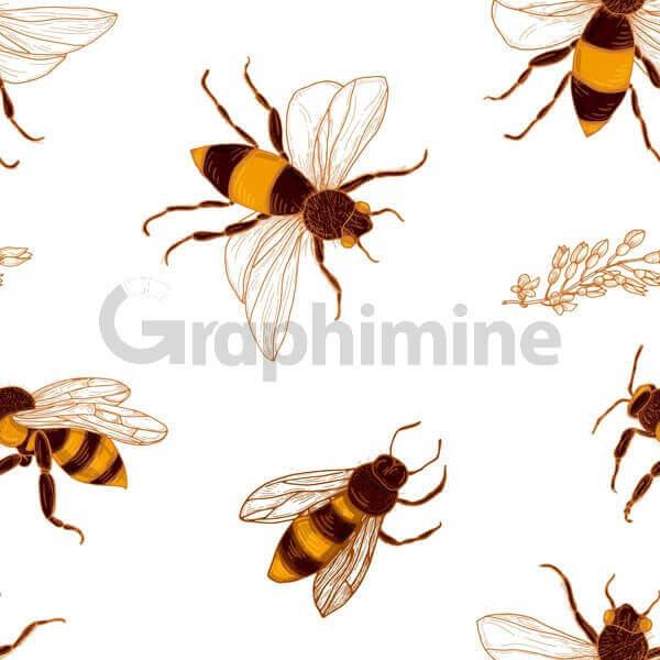 وکتور پترن زنبور عسل شاخه گل اقاقیا